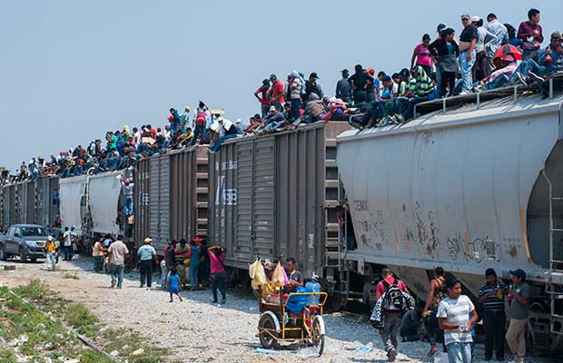 DeathTrainIllegals