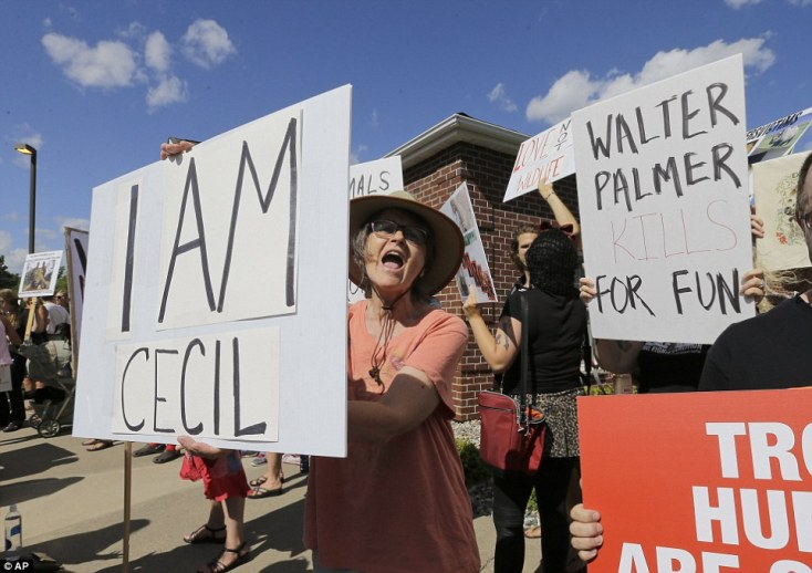 i-am-cecil-protesters